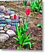 Tulip Rock Garden Metal Print