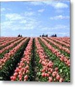 Tulip Town 12 Metal Print