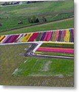 Tulip Town Aerial Metal Print