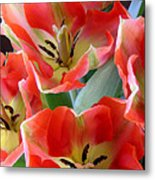 Tulips - Competing For Attention Metal Print