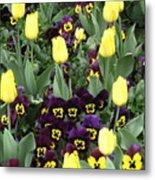 Tulips And Pansies Metal Print