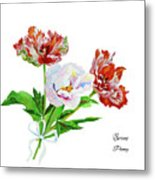 Tulips And Pink White Peony Metal Print