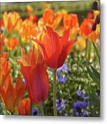 Tulips Everywhere 3 Metal Print