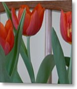 Tulips For You Metal Print