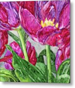 Tulips From A Friend Metal Print