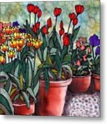 Tulips in Clay Pots Metal Print
