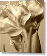 Tulips In Sepia Metal Print