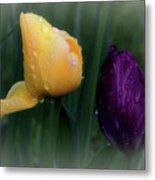 Tulips In The Rain Metal Print