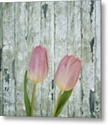 Tulips Two Metal Print