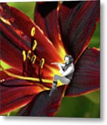 Tullflower Metal Print