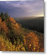 Tully River Valley Autumn Metal Print