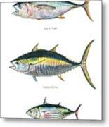 Tuna Fishes Metal Print
