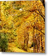 Tunnel Of Gold Metal Print