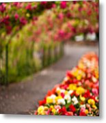 Tunnel Of Roses Metal Print