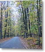 Tunnel Of Trees Metal Print