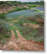 Turkey Bend Park Texas Rough Road Metal Print