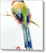 Turquoise-browed Motmot  Bird Metal Print