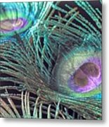 Turquoise Feather Metal Print