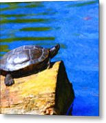 Turtle Basking In The Sun Metal Print by Wingsdomain Art and Photography