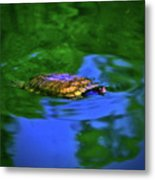 Turtle Coming Up For Air 003 Metal Print