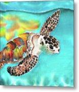 Turtle Creek Metal Print