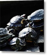 Turtle Family Metal Print