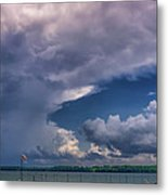 Turtle Point7 Metal Print
