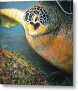 Turtle Run Metal Print