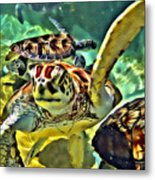 Turtle Swim Metal Print