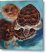 Turtle Time Metal Print