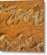 Turtle Tracks Metal Print