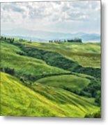 Tusacny Hills I Metal Print
