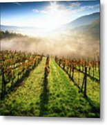 Tuscan Sunrise Metal Print