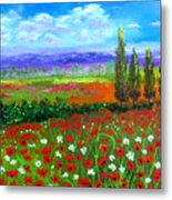 Tuscany Poppies Field Metal Print