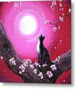 Tuxedo Cat In Cherry Blossoms Metal Print
