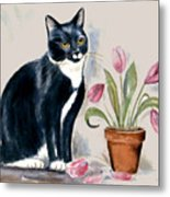 Tuxedo Cat Sitting By The Pink Tulips  Metal Print