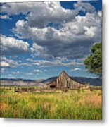 Twaddle-pedroli Ranch Metal Print