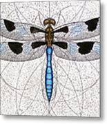 Twelve Spotted Skimmer Metal Print by Charles Harden