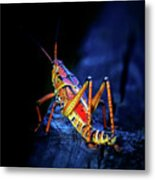 Twilight Grasshopper Metal Print