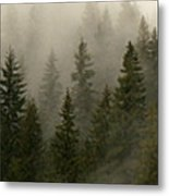 Twilight Mist Metal Print