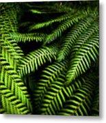 Twilight Rainforest Fern  Metal Print