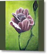Twilight Rose Metal Print