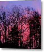 Twilight Trees Metal Print