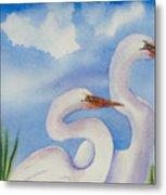 Twin Egrets 2 Metal Print