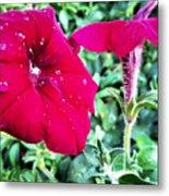 Twin Flower Power Metal Print