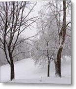 Twins Trees In The Snow Metal Print