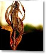 Twist Plant Metal Print