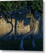 Twisted Early Morning Shadows Metal Print