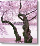 Twisted In Bloom Metal Print