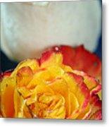 Two Beautiful Roses Metal Print
